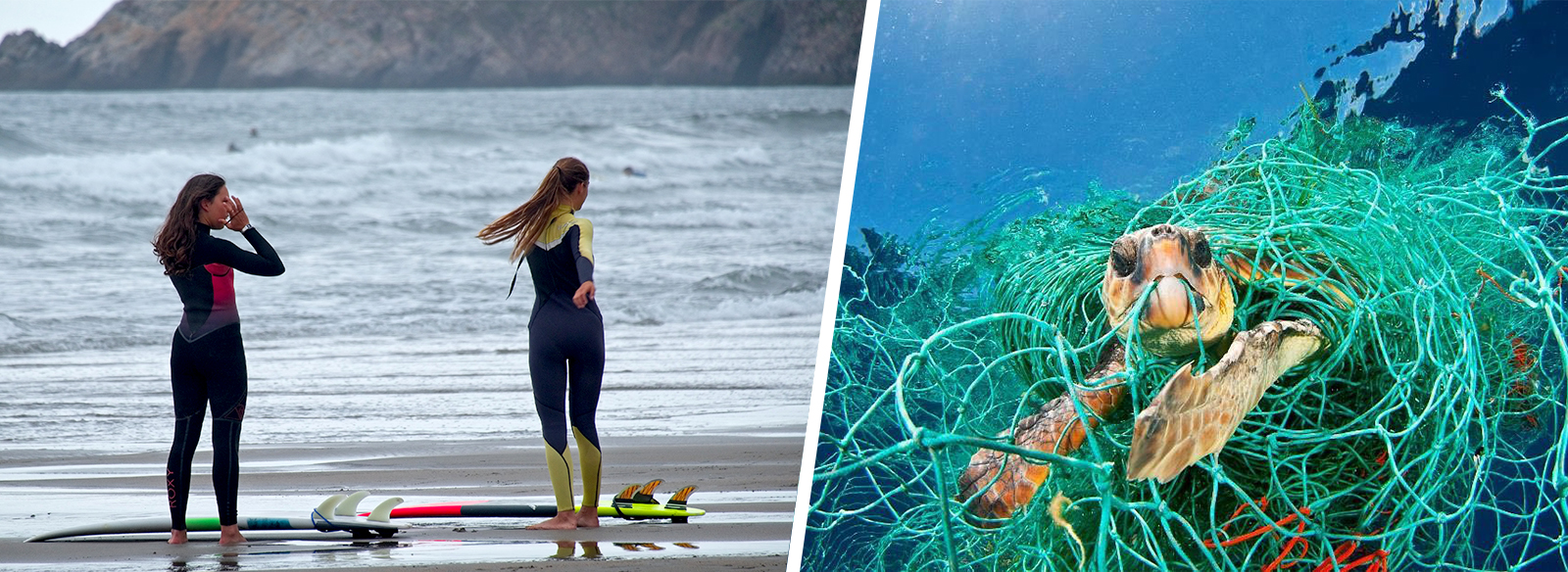 OceanZen: Empowering Women Who Loves to Take Care of the Ocean - Seams For Dreams